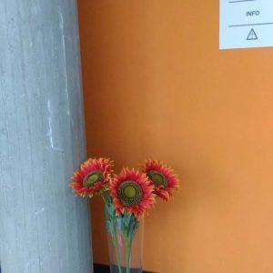 """Lavanderia Self Service Wash """"Il girasole"""" a Cadoneghe (PD)"""